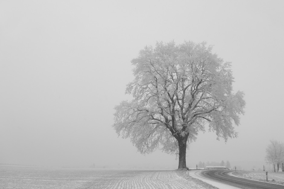 IMGW: Oblodzenie i śnieg w Polsce. Ostrzeżenia dla pięciu województw