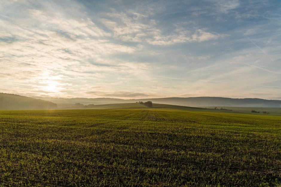 PO proponuje: Zakup do 5 ha ziemi rolnej nie tylko dla rolników