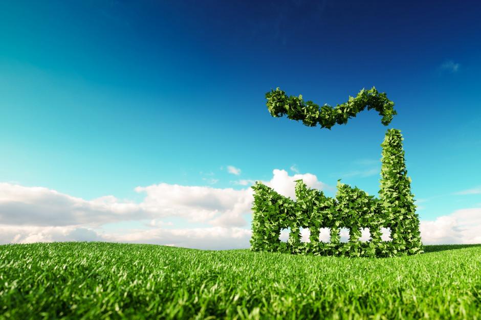 Małe ciepłownie opalane paliwem alternatywnym – jedno rozwiązanie dla dwóch problemów