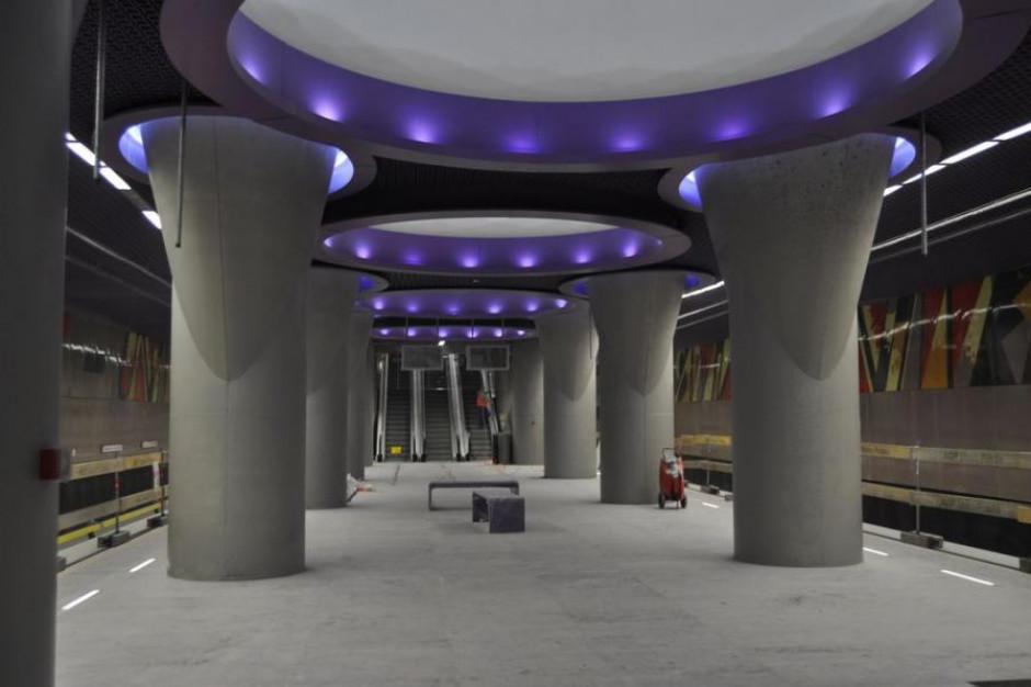 Warszawa: Zaskakujące znalezisko na budowie II linii metra. Odkryto szczątki mamuta