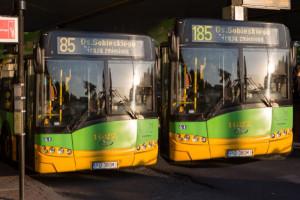 Od nowego roku zmiana numeracji poznańskich linii autobusowych