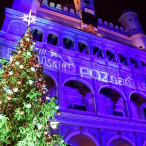 Rozświetlenie choinki przed Ratuszem na starym Rynku w Poznaniu (fot. UM Poznań)