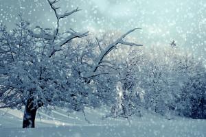 Intensywne opady śniegu w czterech województwach. Jest ostrzeżenie