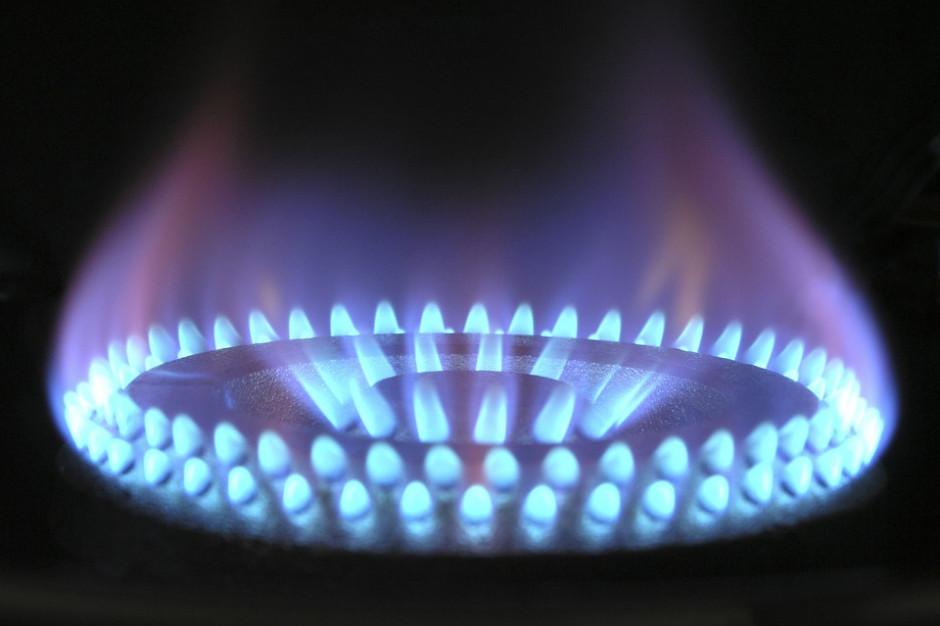 Piotr Woźniak: Ceny gazu nie zostaną nietknięte
