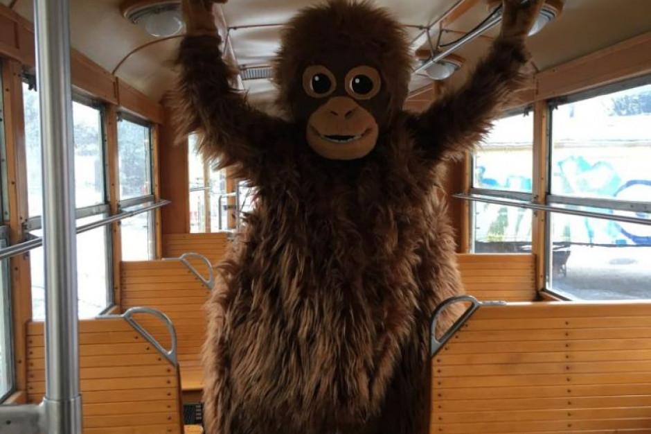 Na tory w Gdańsku wyjechał tramwaj świąteczny