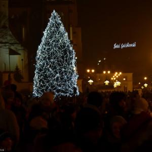 W Białymstoku choinkę zobaczymy na Placu Wolności. Drzewko, choć skromnie ozdobione jedynie lampkami, robi ogromne wrażenie. fot. UM Białystok