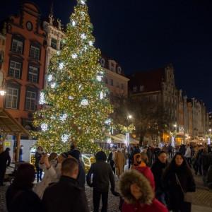 Gdańsk zdobi najwyższa świąteczna choinka w Polsce. Drzewko ma 28 metrów długości i stoi na Długim Targu. fot. Dominik Paszliński/www.gdansk.pl