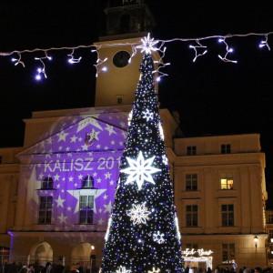 W Kaliszu choinkę ustawiono na Rynku Głównym. Choć sztuczna, wygląda pięknie. fot. UM Kalisz