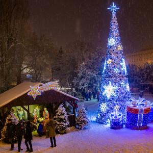 W Bydgoszczy w tym roku zrezygnowano z naturalnej choinki. Na placu Teatralnym stanęła sztuczna wersja świątecznego drzewka. fot. R. Bosiacki