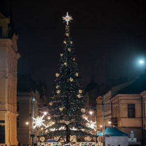 W Łodzi 21-metrowa choinka zdobi Plac Wolności. Drzewko ozdobione jest bombkami w kolorach logo miasta wraz z leżącymi pod nią wielobarwnymi rozświetlonymi prezentami. Wszystkie elementy są świetnym tłem dla zdjęć upamiętniających zimowy spacer po Piotrkowskiej. fot. UM Łódź