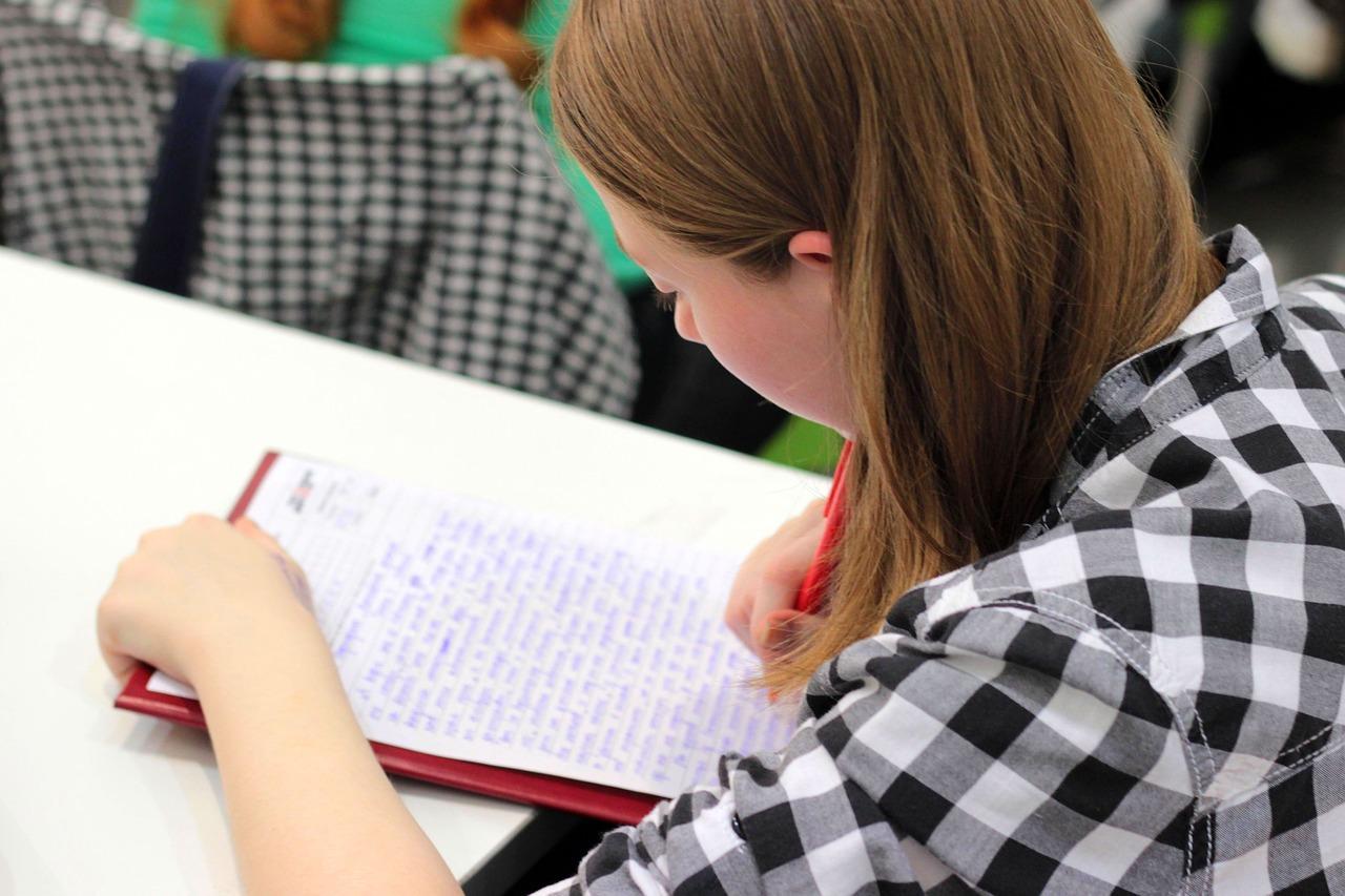 Według prognoz MEN o przyjęcie do szkół średnich w roku 2019 ubiegać się będzie około 727 tys. uczniów. fot. pixabay.com