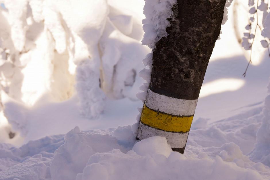 Śniegu w Karkonoszach jest coraz więcej. GOPR ostrzega turystów
