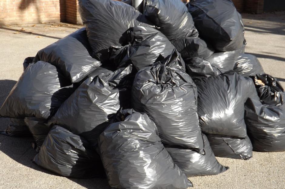 Nielegalnie składowała odpady. Jest wniosek o areszt dla mieszkanki gminy Zgierz
