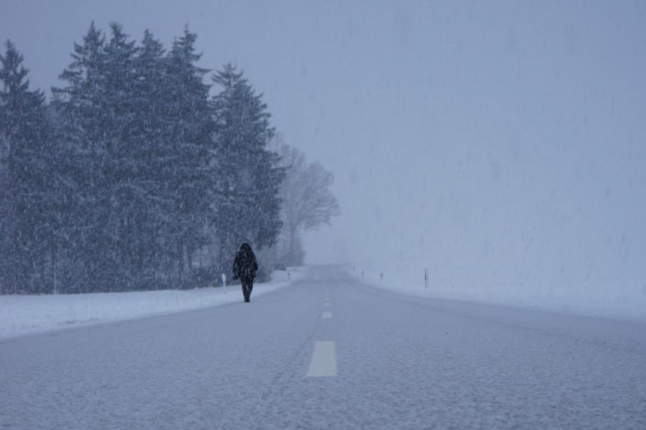 Silny wiatr i zamiecie w Polsce. IMGW wydało ostrzeżenia