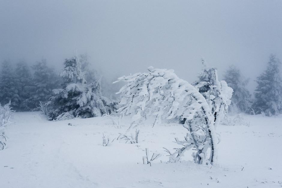 Zawieje i zamiecie śnieżne paraliżują ruch w stolicy Podlasia