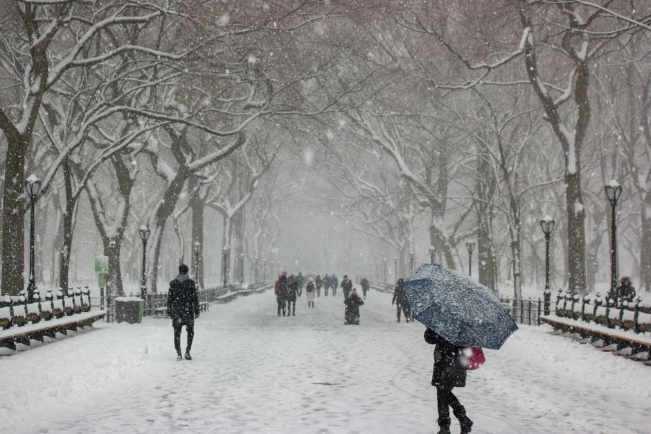 Silny wiatr, śnieg i gołoledź w Polsce. IMGW wydał ostrzeżenia dla województw