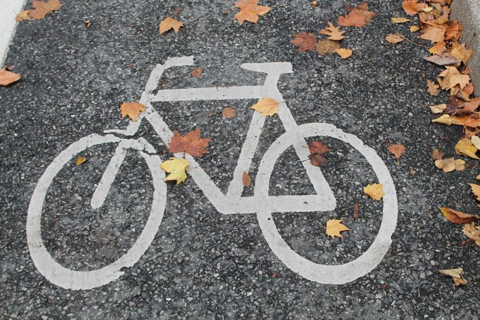 Rozbudowa sieci tras rowerowych pochłonie ponad 20 mln zł (fot.pixabay)