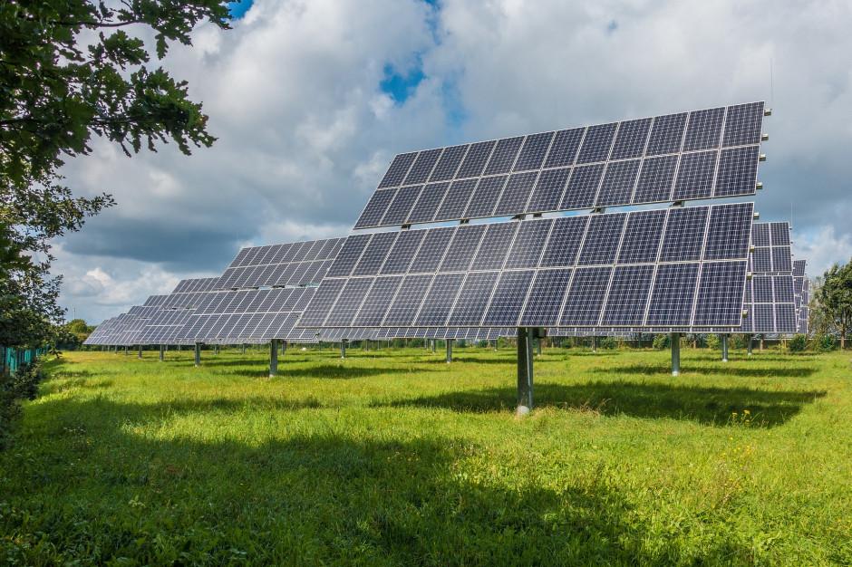 Potrzebny większy nacisk na pozyskiwanie energii z odnawialnych źródeł