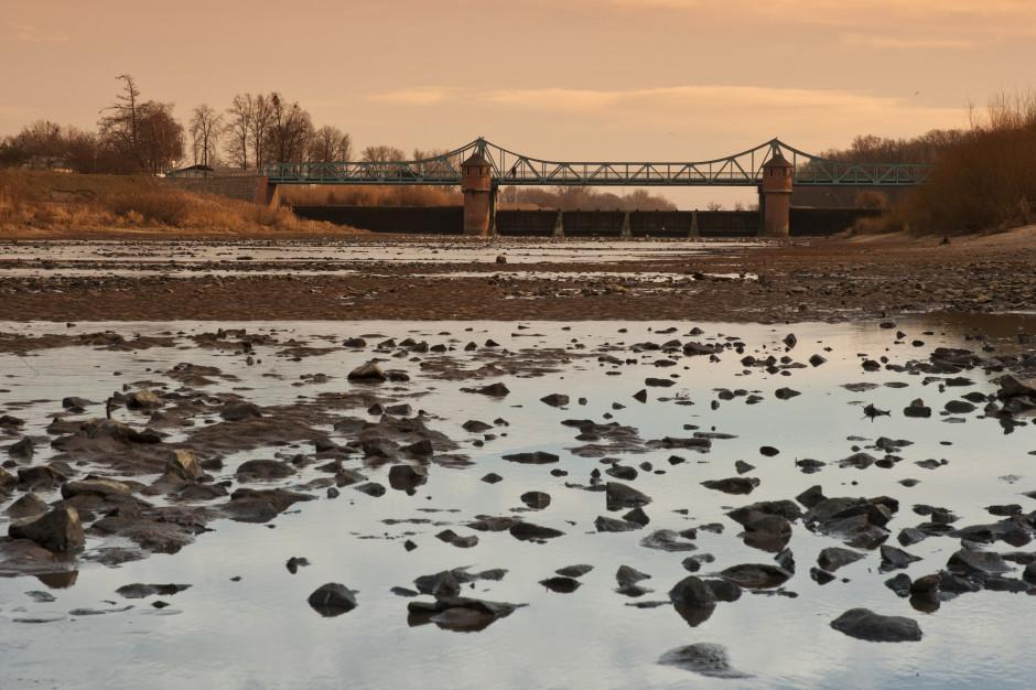 Wody Polskie: To pierwszy w Polsce plan przeciwdziałania suszy