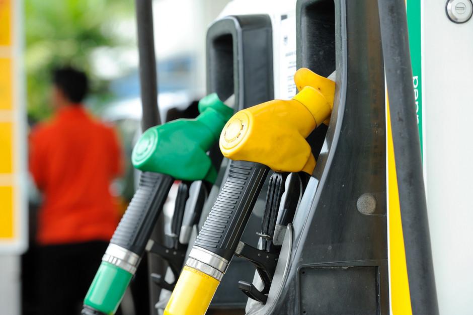 Wysokie ceny paliw we Włocławku. Prezydent pisze do UOKiK, PiS chce miejskiej stacji