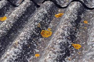 W Krakowie do usunięcia pozostało jeszcze ok. 3,2 tys. ton azbestu