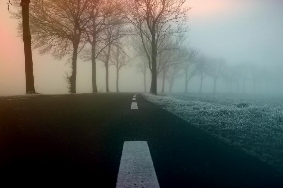 GDDKiA: Utrudnienia na drogach przez mgły
