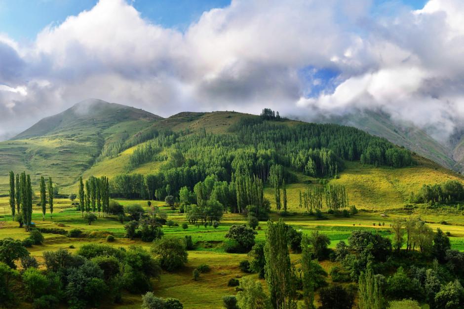 Walka ze smogiem, odnawialne źródła energii i ochrona zagrożonych gatunków: to główne cele proekologicznych inwestycji na Dolnym Śląsku