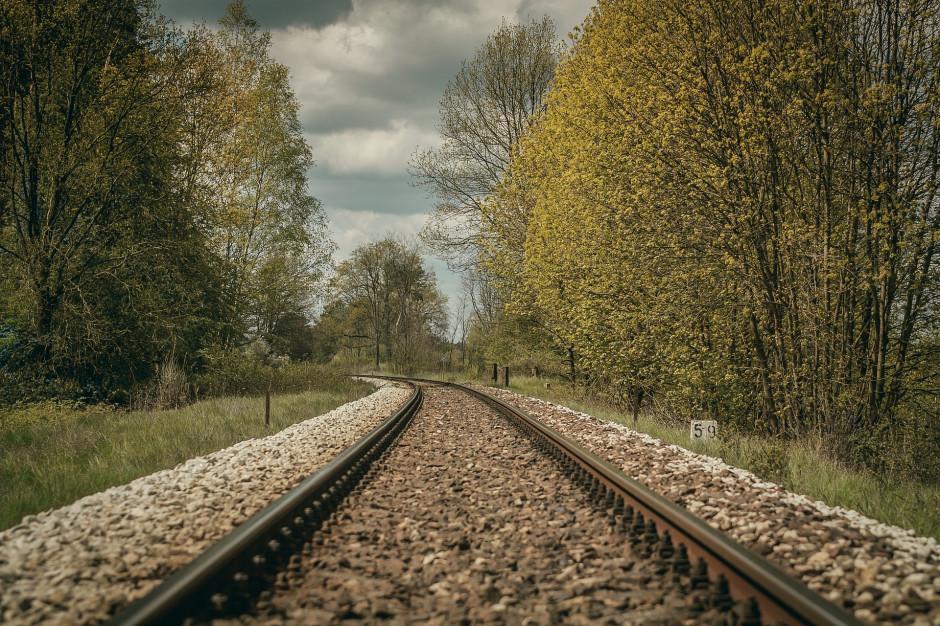 Remont linii kolejowej Żywiec - Węgierska Górka. Będzie komunikacja zastępcza