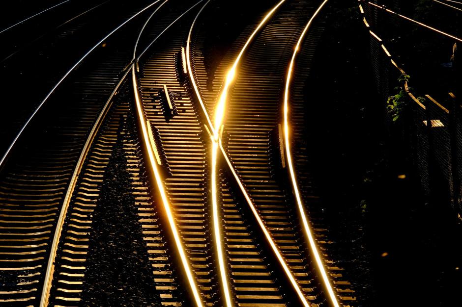 Rusza budowa mijanki na linii kolejowej w Majdanie Królewskim