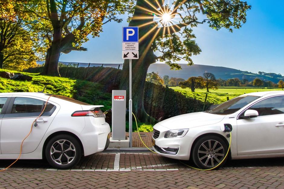 Urząd Miasta potrzebuje samochodów elektrycznych. Kraków prowadzi największy przetarg w Polsce