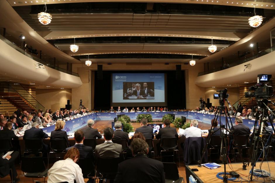Jerzy Kwieciński na posiedzeniu komitetu OECD o zrównoważonym rozwoju