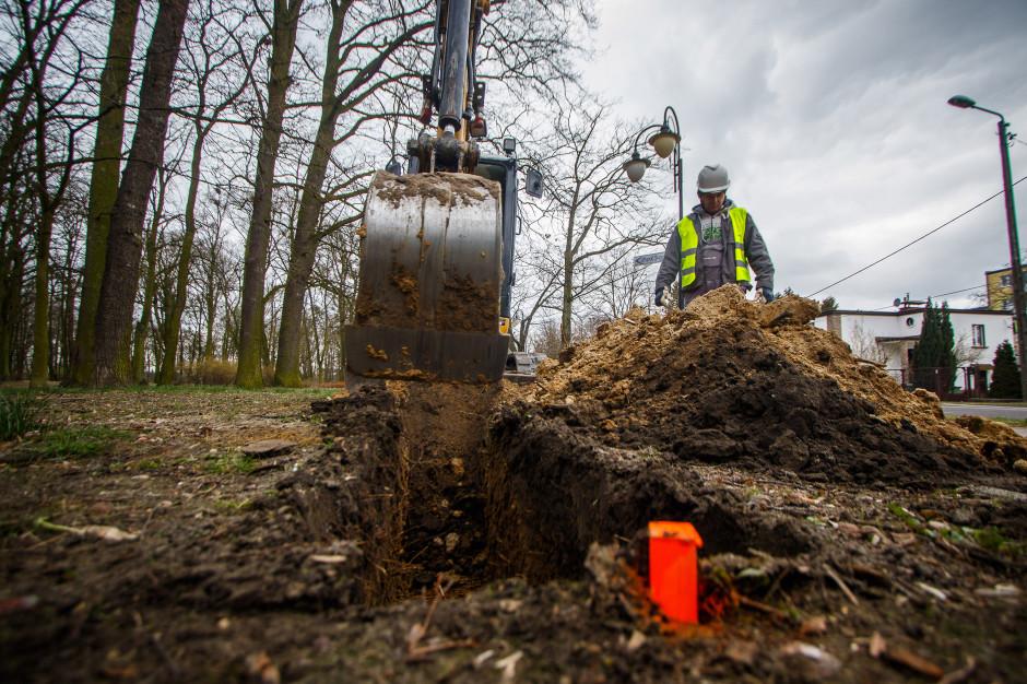 Ekologiczny prąd z biomasy. W Ostrowie budują pierwszą w Polsce sieć