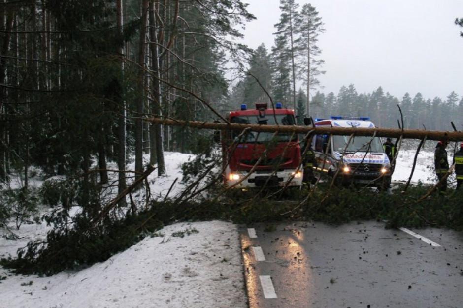 Małopolskie: 850 tys. zł dla gmin poszkodowanych w wyniku silnych wichur