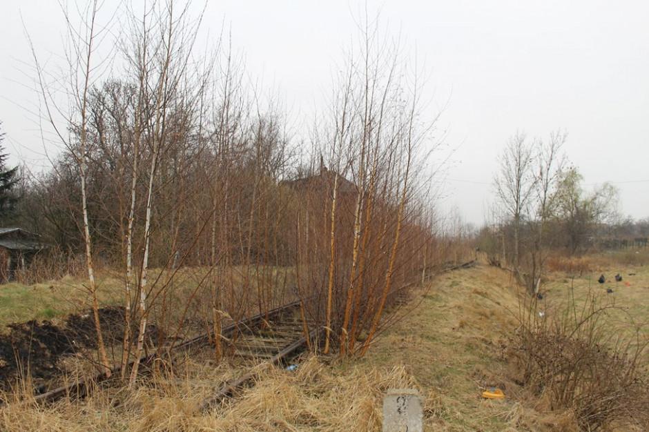 Z Wrocławia w Góry Sowie. Rusza remont turystycznej linii kolejowej