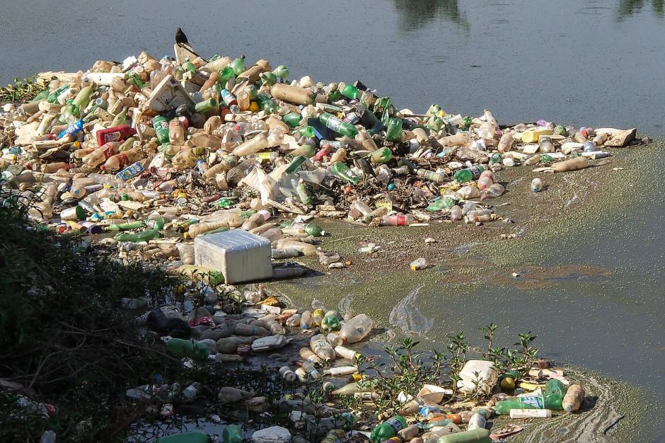 Miasta bez plastiku. Czy to realne? Samorządy się budzą i zaczynają działać