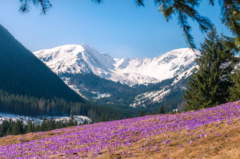 Jeziora w Tatrach robią się niebezpieczne