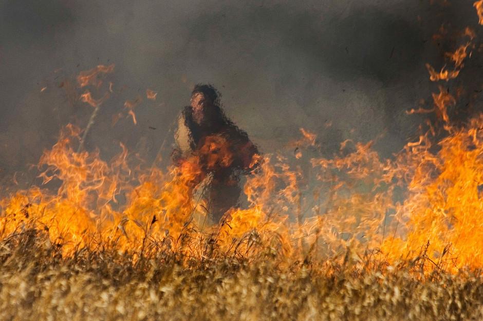 Pożary traw i lasów w całej Polsce. Jest ofiara śmiertelna