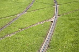 Warszawa inwestuje w kolejne zielone torowisko. Będą utrudnienia
