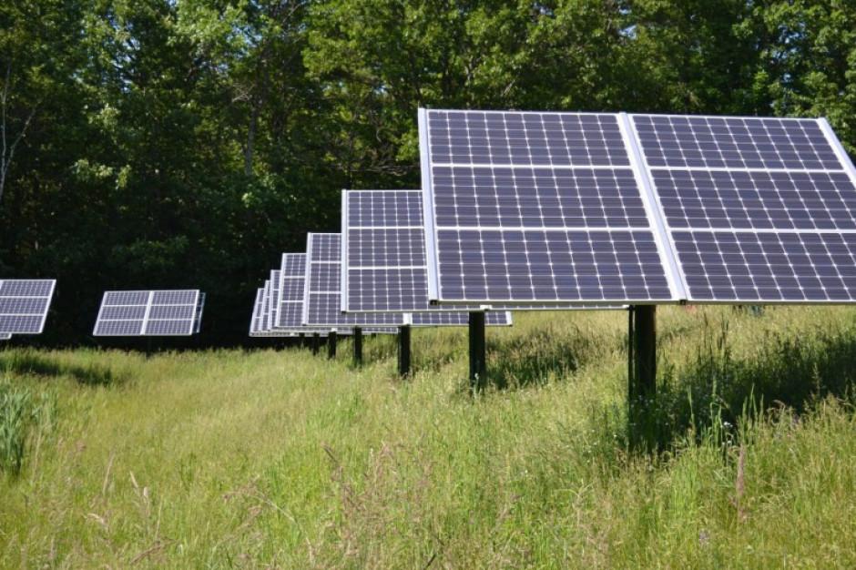 Mała gmina zbuduje prawdziwą fabrykę energii ze słońca. Zarobi miliony złotych