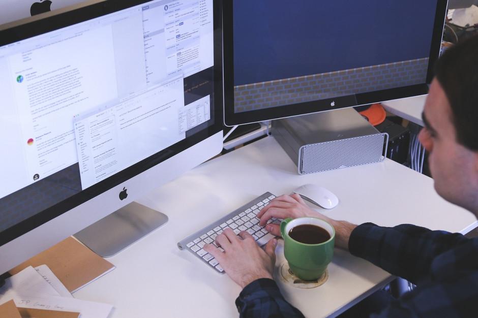 Prawie 100 proc. urzędów udostępnia swoje usługi przez internet