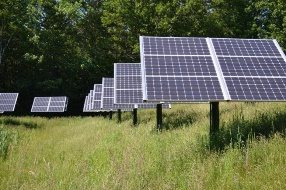 Elektrownia fotowoltaiczna o mocy 5 MW powstanie w gminie Osiek