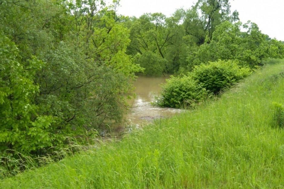 Śląskie: Stabilizuje się poziom wody w rzekach