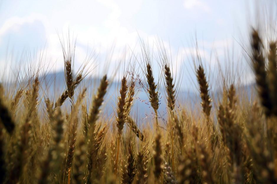 Woda z odzysku będzie wykorzystywana w rolnictwie