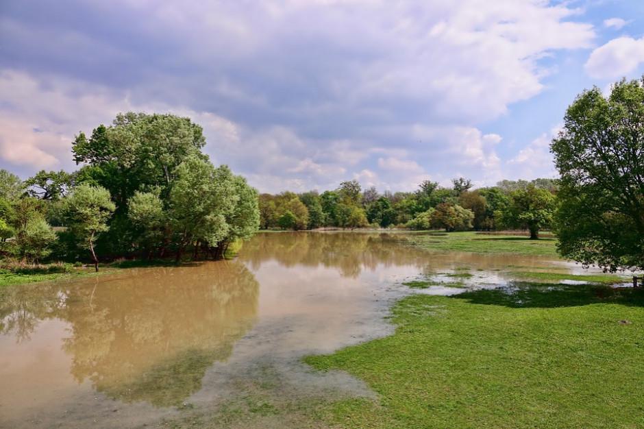 Systematycznie spada poziom Wisły w Wyszogrodzie, Kępie Polskiej i Płocku