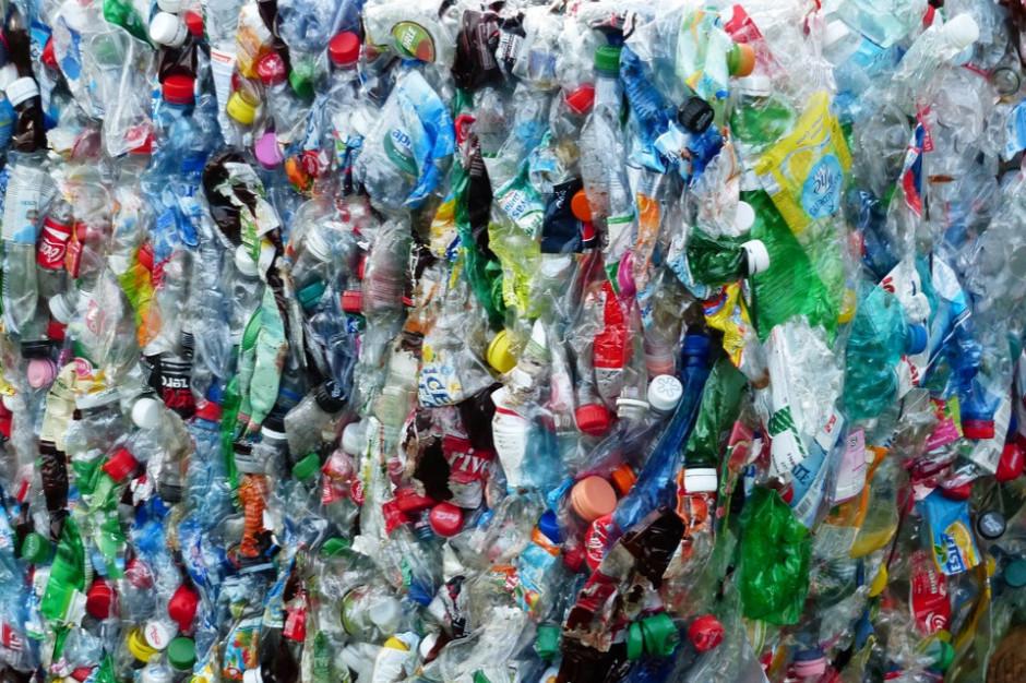 Górnośląsko-Zagłębiowska Metropolia rezygnuje z plastiku