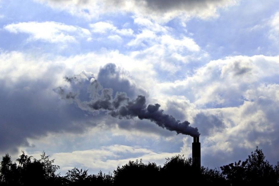 Małopolska: Coraz więcej skarg na palących odpadami