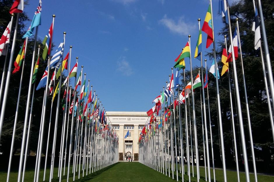 Polskie miasto będzie gospodarzem forum internetowego ONZ