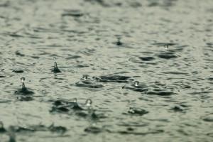 Małopolskie: Blisko 60 zgłoszeń w związku z opadami deszczu