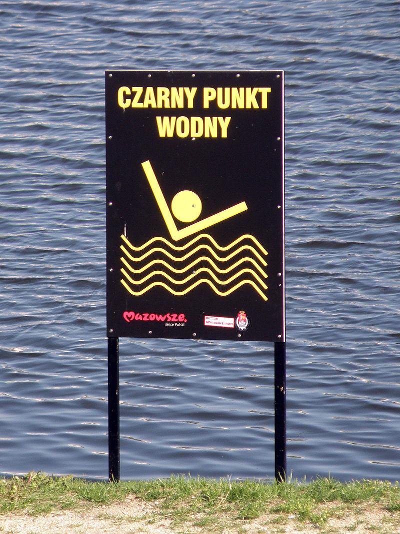 Czarny punkt wodny na Gocławiu w Warszawie (fot. wikipedia.org/Alina Zienowicz/ CC BY 3.0)