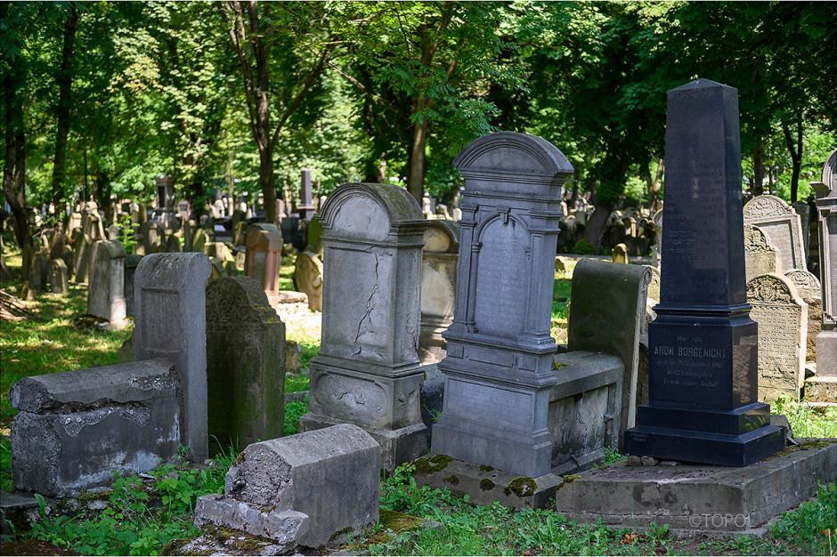 Odnowiono zabytkowy cmentarzy żydowski w Tarnowie
